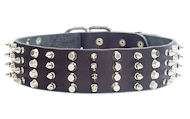 2 inch Leather Dog Collar with STUDS and SPIKES for police dogs