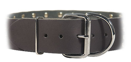 2 inch wide All Weather Collar for police dogs-Leather Collar