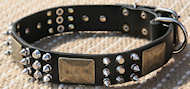 Custom Leather Dog Collar - brass massive plates&spike