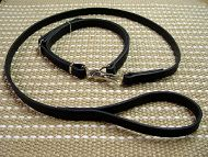 Police / hunting' dog leash and collar (combo)