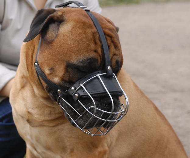 Heavy Duty Wire Basket Dog Muzzle for DOG