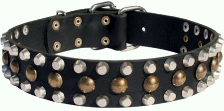 Custom Studded Leather Dog Collar for police dogs