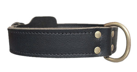 All dogs K9 Leather Agitation Collar aprox.2 Wide