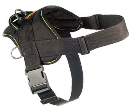 Fashion Dog Harness-Everyday Harness for DOG