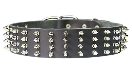 2 inch wide Leather Spiked Dog Collar for police dogs