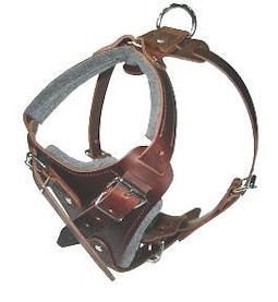 Padded Dog Harness H10