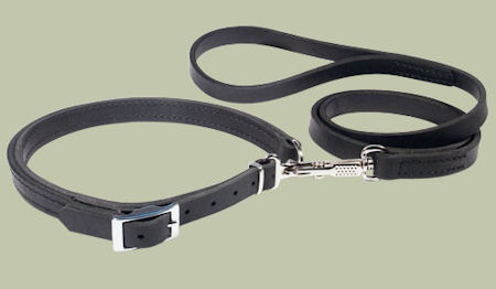 Leather Patent Dog Leash collar for DOG