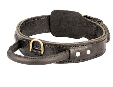 Quick Control Dog Collar with Handle for police dogs
