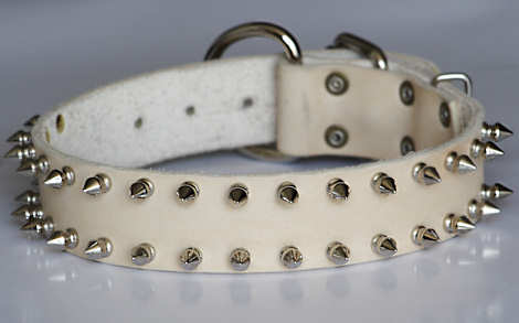 custom leather spiked dog collar