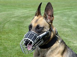 Wire Basket Dog Muzzles for police dogs