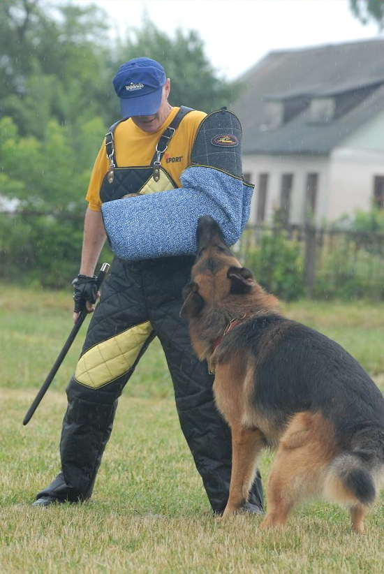 Perfect place to get Schutzhund And Sport Bite Sleeves , Dog Protection Sleeve , Bite Sleeve Covers , dog harness, dog muzzle, dog collar and other great products