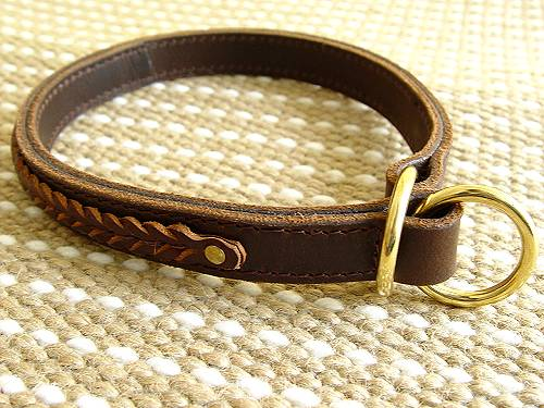 Gorgeous Wide 2 Ply Leather Choke Dog Collar - Fashion Exclusive for Dog