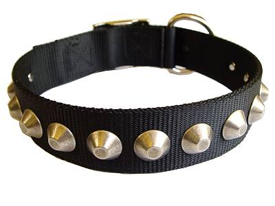 Gorgeous Wide Nylon Dog Collar With Nickle Pyramids for dog training or for dog owners