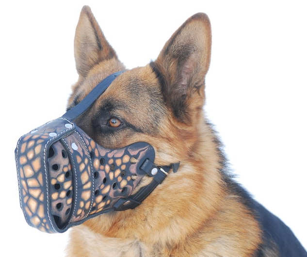 "Leather dog muzzle ""Dondi""-plus style For GSD"