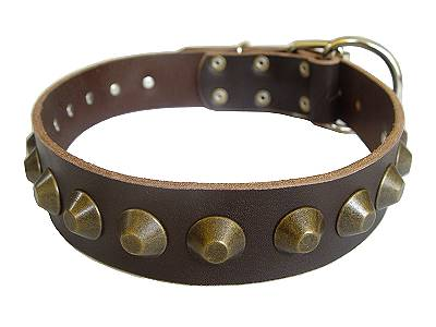 Gorgeous Wide Leather Dog Collar - Brown