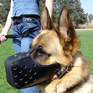"Leather Dog Muzzle ""Dondi"" style"