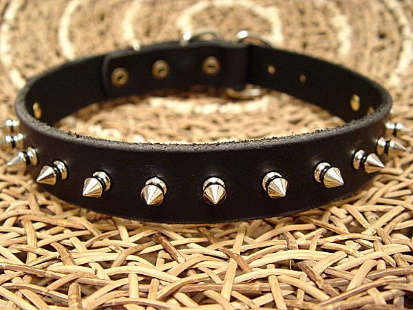 Leather Spiked Dog Collar- 1 Row of spikes collar for all dogs