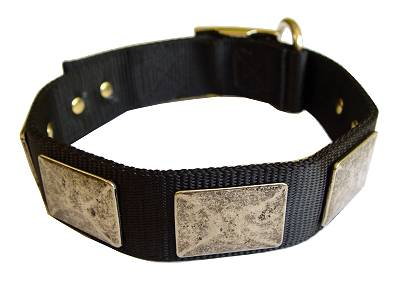 Nylon Dog Collar For Large and Medium Breeds With Vintage Plates