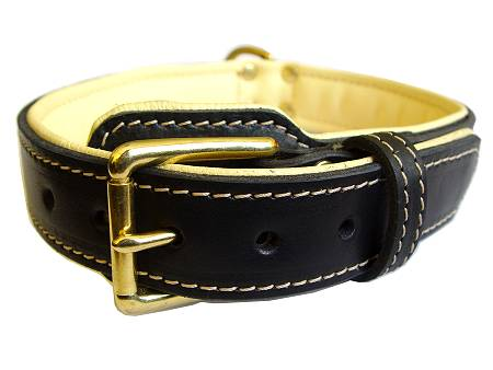 Royal Nappa Padded Hand Made Leather Dog Collar for dog training or for dog owners