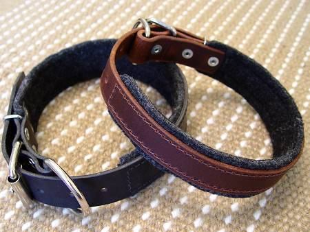 best leather padded dog collar