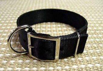 1 1/5 inch Nylon Dog Collar for Working Dogs