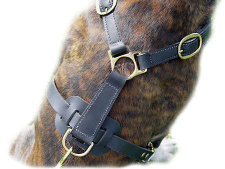 Classic Leather Harness For Big Dogs-all dogs harness
