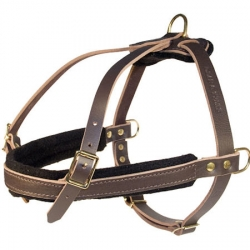 Leather Tracking Harnesses-D rings Dog Harness for Working dogs