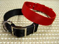 2 Ply Nylon Extra Wide Dog Collar