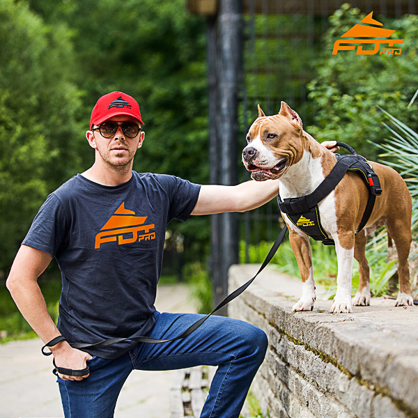Men T-shirt of Reliable Cotton with Logo for Dog Trainers