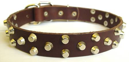 best leather dog collar