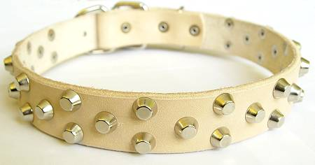 dog collar for walking