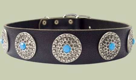 High Quality Dog Collars with blue stones schutzhund dogs